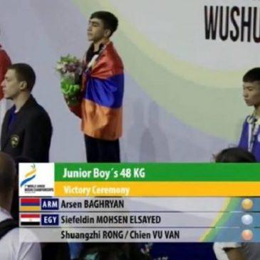 Armenio de Artsakh campeón Mundial Juvenil de arte marcial Wushu (Video)