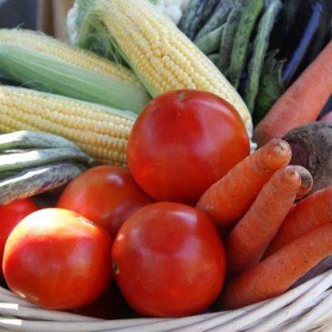 El volumen de exportación de frutas y hortalizas frescas aumentó un 67,8% en 2018.